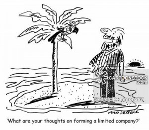 'What are your thoughts on forming a limited company ?'